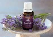 Lavender is one of my favorite essential oils. It is incredibly versatile and I use it everyday--either on my body in an oil blend, in my ...