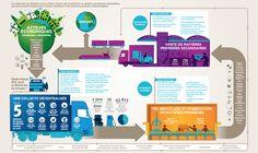 Recycler les déchets requiert des équipements et des process dont voici les grandes lignes. #Paprec #recyclage http://www.paprec.com/fr/groupe-paprec-environnement/vision-du-recyclage