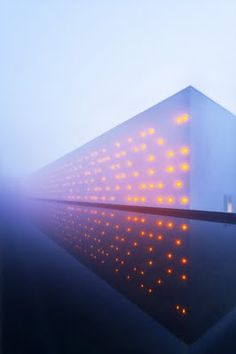 winery in bordeaux, night lights, magical, fog, reflection