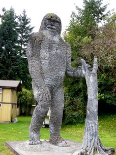 is bigfoot real yes or no