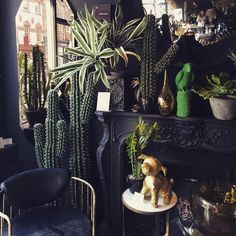 The best ways to bring the outside into your home, from dark and moody interiors, cacti and houseplants to tropical prints and more. Decoration Plante, Dark Interiors, Faux Plants, My Living Room, Interior Design Inspiration, Design Ideas, Interior And Exterior, Living Room Designs, Interior Decorating