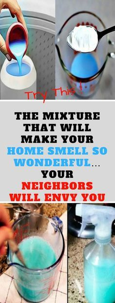 THE MIXTURE THAT WILL MAKE YOUR HOME SMELL SO WONDERFUL… YOUR NEIGHBORS WILL ENVY YOU!!