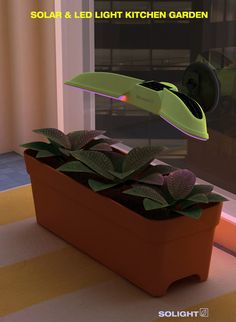 Solight – Indoor Solar Lamp For Plants by Lee Ju Won