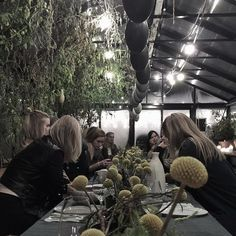 Dinner on the top of Copenhagen in a rooftop green house in November? Yup, that's @stedsans_cleansimplelocal decorated with gorgeous ceramics from @mentforbilder and cooking by @katrinetuborgh