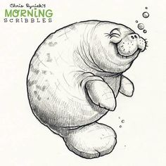 It's Manatee Appreciation Day! I swam with these adorable monsters on several occasions when I lived in Florida, they really are strange and amazing creatures. I DO appreciate them! Cute Monsters Drawings, Cartoon Drawings, Easy Drawings, Drawing Cartoon Animals, Animal Sketches, Animal Drawings, Drawing Sketches, Monster Drawing, Monster Sketch