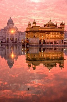 Midlife-Crisis Trips The Golden Temple, Amritsar. Stay in India with affordable accommodation here: The Golden Temple, Amritsar. Stay in India with affordable accommodation here: Places Around The World, Oh The Places You'll Go, Places To Travel, Places To Visit, Around The Worlds, Travel Destinations, Golden Temple Amritsar, Photos Voyages, Incredible India