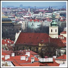 Rooftops in the Rain, Prague