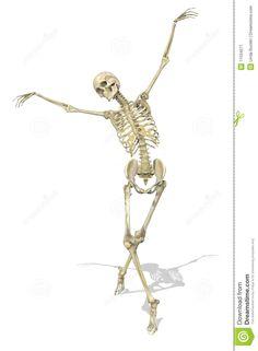 ballet skeleton - Google Search