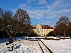 Zima w Parku Oliwskim - grudzień / #Winter in #Oliwa #Park - November | Author: Patrycja Walczak | #gdansk