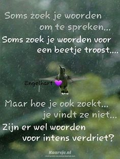 - Susan in de Overgang Death Quotes, Sad Quotes, Words Quotes, Quotes To Live By, Life Quotes, Sayings, Love Words, Beautiful Words, Special Love Quotes