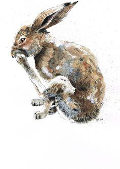 ✕ Jina Gelder: the sweet little rabbit / #art #rabbit