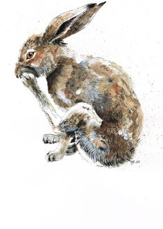 ✕ Jina Gelder: the sweet little rabbit / #art #rabbit