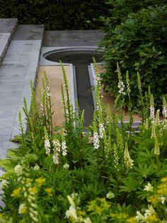 Chelsea 2014 - By Luciano Giubbilei Landscape Architecture, Landscape Design, Bog Plants, Chelsea Garden, Contemporary Garden Design, Water Walls, Villa, Water Features In The Garden, Garden Fountains
