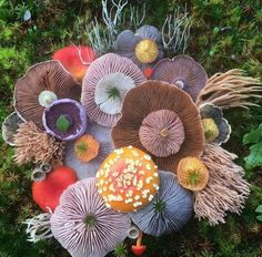 Fungus Art - Found the artist! This gorgeous real-life picture will be here 2017 calendar available for sale soon. See more from Jill Bliss Artwork on Facebook:   https://www.facebook.com/jill.bliss.artwork/photos/a.411211234251.200706.272849394251/10154159041514252/?type=3&theater