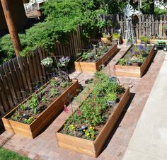 "Marie's Rust Garden ""...grow more veggies and enjoy my rusty treasures at the same time"" Marie Niemann -"