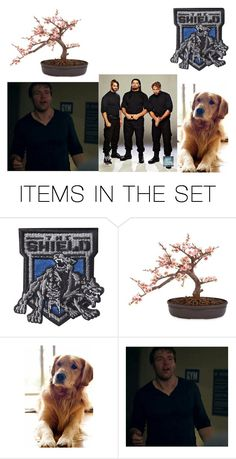 """Blade's life (Before marrying Leah and the kids)"" by kassidycumberland ❤ liked on Polyvore featuring art"