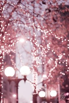 Pink sparkle. City lights.