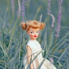 Stare () #photography #photo #vintage #vintagedoll #dolls #doll #tammydoll #tammy