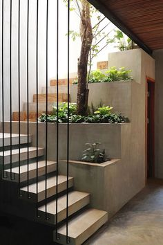 Modern Staircase Design Ideas - Browse photos of modern stairs and also discover design and layout ideas to motivate your very own modern staircase remodel, consisting of distinct railings and storage . Concrete Staircase, Staircase Design, Staircase Ideas, Stair Design, Staircase Remodel, Staircase Railings, Stair Idea, Open Staircase, Staircase Decoration
