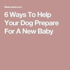 6 Ways To Help Your Dog Prepare For A New Baby