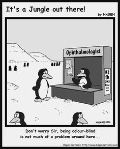 Color Blind Penquins