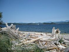 Quadra Island I love driftwood What A Beautiful World, Beautiful Places, Places To See, Places Ive Been, O Canada, Beauty Shots, Geocaching, Island Beach, Vancouver Island