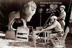 Atenção para a coragem dos câmeras durante a filmagem da famosa vinheta da MGM com o leão rugindo. Detalhe: O clipe está completando 90 anos!