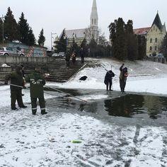 Pravi se staza za sutrašnje Bogojavljansko plivanje #zrenjanin #ilovezr