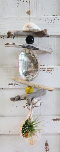 Air Plant Driftwood & Seashell Dangle - Made in California