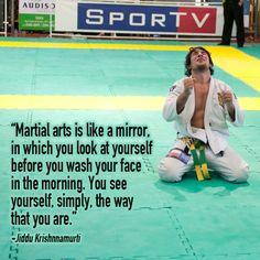 Martial Arts is a Mirror #McDojo #McDojoLife www.Facebook.com/McDojoLife