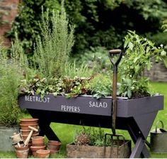 So cool this is such a great idea for a raised planting bed. Easy on the back to work with and holds water well it looks like.