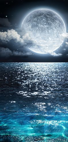 Moonlight Canvas Set - Moon Art, , Ocean Decor, Coastal Home Decor <br> Bring out the serenity of the night with this moonlight canvas! Tier Wallpaper, Wallpaper Space, Animal Wallpaper, Wallpaper Backgrounds, Wallpaper Quotes, Wallpaper Desktop, Iphone Wallpaper Ocean, Cute Galaxy Wallpaper, Planets Wallpaper