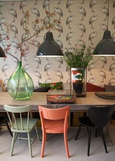 Quite possibly the world's greatest wallpaper and I love the mismatched chairs and cool plants too.