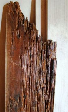 Up-close look at one of the damaged floorboards