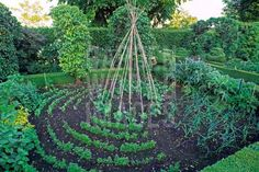 More than just a vegetable garden How pretty! Love this idea! Instead of a water feature this year - or maybe any year(!) I'm thinking a huge homemade trellis of beans and climbing flowers. Outdoor Gardens, Spiral Garden, Garden Design, Edible Landscaping, Veggie Garden, Herb Garden, Potager Garden, Plants, Edible Garden