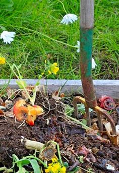 Permaculture and Compost