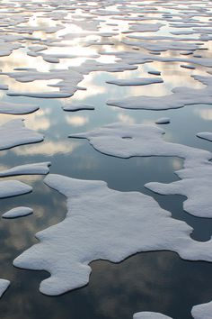floating cap of sea ice in the Arctic Ocean