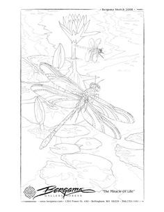 FREE Downloadable Printable Drawing Sketches Sheets To