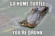 But I Saw the Ninja Turtles do it!