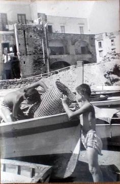 1960 70 Vintage Foto Photo Isola D'Ischia Porto Pescatori IN Erba E Nasse 12   eBay