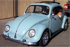 67 vw bug. My dad had this car when I was a little girl! Loved it!