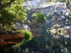 crystal pools - Google Search
