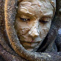 En las FIESTAS DE Montblanc Tarragona 2014 Lion Sculpture, Statue, Photos, Photo Galleries, Fiestas, Artists, Pictures, Sculptures, Sculpture