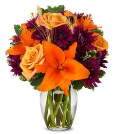 Orange Purple Blooms at From You Flowers Flowers Today, Flowers For You, Fall Flowers, Orange Roses, Orange And Purple, Happy Anniversary Wife, Purple Cushions, Asiatic Lilies, Fall Arrangements