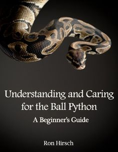 Understanding and Caring for the Ball Python: A Guide by Ron Hirsch,