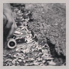 #longboard#loaded#skate #Padgram