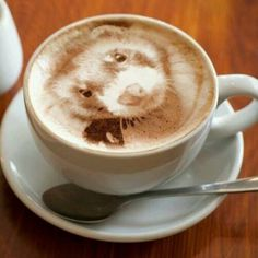Ferret Coffee...that is amazing..!