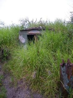 Finding old bunkers in Guantanamo Bay Cuba
