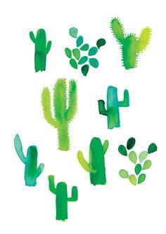los nopales (the cactus)