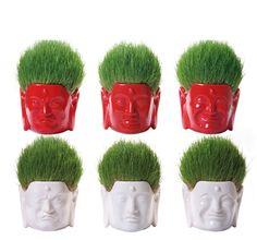 The Salon of Great Buddha  大仏美容室プランター  デザイナー: we+